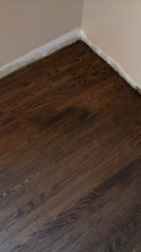 Pet Stains On Hardwood Flooring