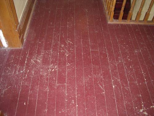 Several Coats Of Paint Were Lied To This Pine Floor Over The Years Not It Was Time Bring Back Old Beauty Natural Wood From Underneath All