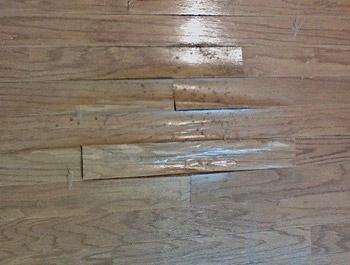 Hardwood Floor Damage